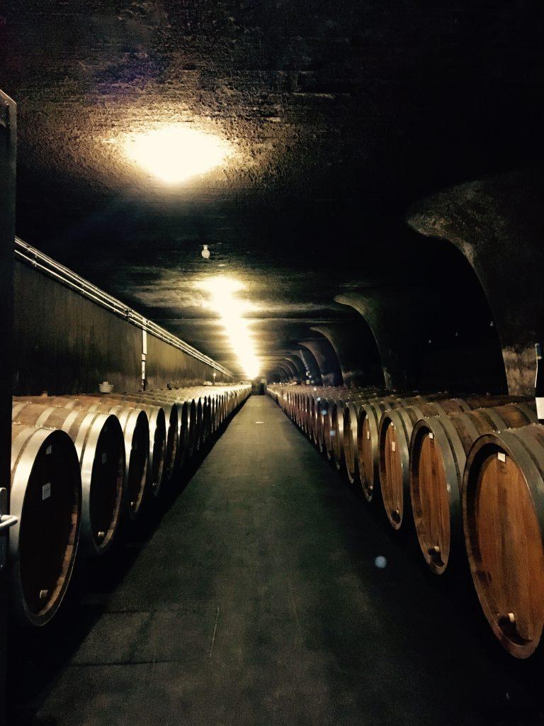 Die unter der Stadt Trier labyrinthartig verzweigten Weinkeller der Bischöflichen Weingüter